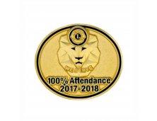 PIN 100% ATTENDANCE  2017- 2018