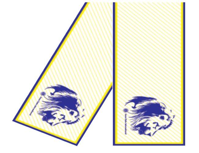 Echarpe Personalizada Lions
